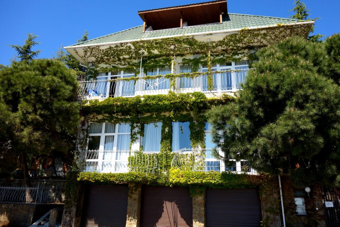 Вьющиеся на фасаде растения в Крыму