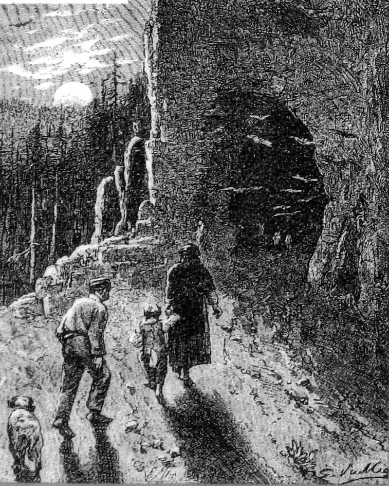 Картинка к роману «Маленький шеврьер» Жанны Казин