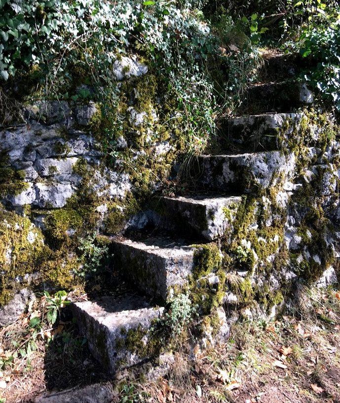 Старые ступени из леса во Франции